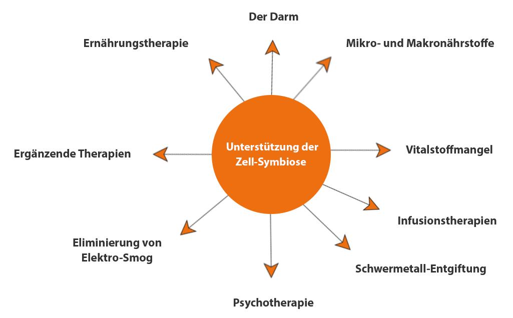 Cellsymbiosis-Therapie Siegen