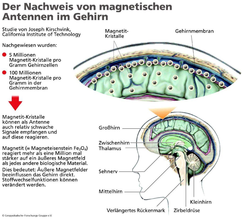 Elektrokrank - Behandlung in Siegen